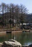 依靠在山湖和木道路的上面 免版税库存照片