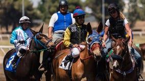 伴侣小马和骑师 库存照片