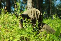 侦察员在森林里 免版税库存照片