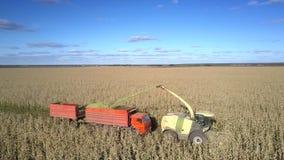 侧视图玉米收割机倾吐青贮入在领域的卡车 股票录像