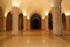 侯赛因Bin塔拉勒国王清真寺在阿曼(在晚上),约旦 免版税图库摄影