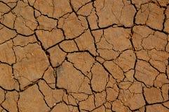 侵蚀土壤 免版税库存图片
