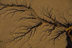 侵蚀在水的作用造成的沙漠 免版税库存照片