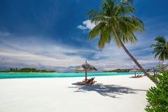 轻便折叠躺椅在热带海滩的棕榈树下马尔代夫 免版税库存图片