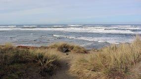俄勒冈与海滩草和波浪的海岸照片 免版税库存图片