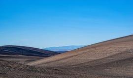 俄勒冈分站火-野火毁坏的记录麦子庄稼4 库存图片