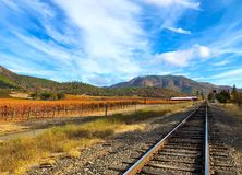 俄勒冈南部葡萄园在秋天 免版税图库摄影