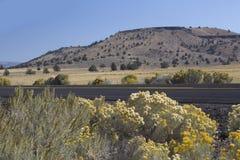俄勒冈沙漠高速公路在秋天 图库摄影