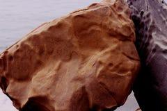 俄勒冈沿海海滩小海湾 库存照片