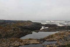 俄勒冈海岸的海岸线 库存图片