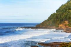 俄勒冈海岸线视图 免版税图库摄影