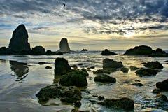 俄勒冈海滩,大炮海滩 免版税库存图片