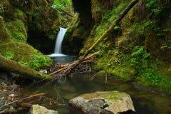 俄勒冈瀑布 库存图片