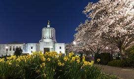 俄勒冈状态国会大厦,萨利姆 库存图片