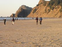 俄勒冈的访客在土地` s末端/林肯城沿岸航行 库存照片