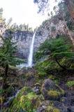 俄勒冈Umpqua全国森林凶恶Umpqua风景小路华森秋天 免版税库存照片