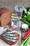 俄国与的传统单片三明治在黑麦面包的沙丁鱼与葡萄酒杯伏特加酒 库存照片