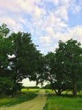 俄国乡下后院在温暖的夏天 库存照片