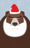 俄国人圣诞老人克劳斯熊 与胡子和髭的野生动物 图库摄影