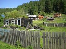 俄国人西伯利亚山阿尔泰 图库摄影