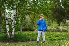 俄国六岁的男孩在充分的成长的桦树森林里 孩子舔一个大棒棒糖 免版税库存图片