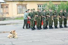 俄国军队事件 库存照片