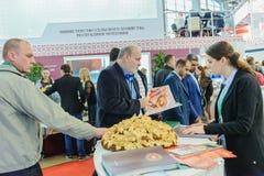俄国农业的和工业的陈列金黄秋天 免版税库存图片