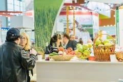 俄国农业的和工业的陈列金黄秋天 免版税图库摄影