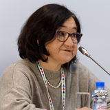俄国博物馆协会Zelfira Tregulova的主任 库存图片