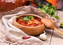 俄国和乌克兰全国红色汤 免版税库存图片