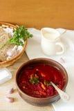 俄国和乌克兰烹调-罗宋汤一个传统盘  汤用甜菜、肉、土豆和豆 免版税库存图片