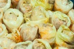 俄国圆白菜卷的未加工的塞尔维亚盘版本充满肉末,米,葱称sarma接近  免版税库存照片