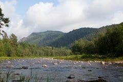 俄国山的河 库存照片