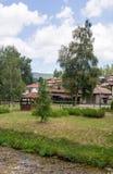 俄国桦树在保加利亚语的Koprivshtitsa一个公园 库存照片