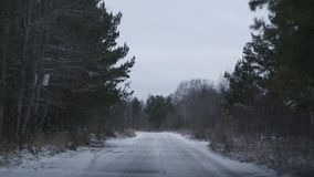 俄国森林公路 股票视频