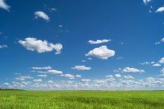 俄国空间 萨拉托夫地区的绿色领域在蓝天和美丽的云彩下 免版税库存照片
