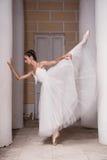 俄国芭蕾舞女演员 免版税库存图片