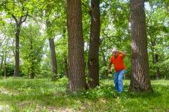 俄国谚语的例证-在失去的三棵杉木中 免版税库存图片