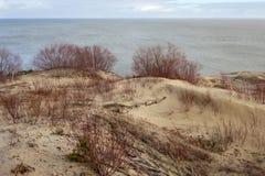俄国部分库尔斯沙嘴的沙丘在冬天 库存图片