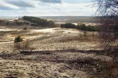 俄国部分库尔斯沙嘴的沙丘在2月 库存图片
