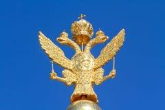 俄国金黄双重朝向的老鹰 库存照片