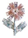 俄国钞票的花 免版税库存照片