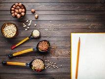 俄国食物概念 图库摄影