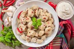 俄国食物 免版税图库摄影