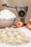 俄国饺子 烹调的过程 免版税库存图片