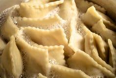 俄国馄饨- pelmeni在汤煮沸 蛋白甜饼 免版税图库摄影