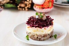 俄国鲱鱼沙拉 免版税库存图片