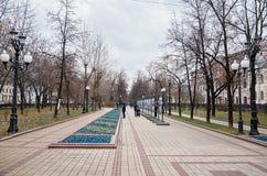 俄国 公园在干净的池塘的莫斯科 2017年11月18日 库存图片