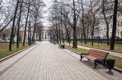 俄国 公园在干净的池塘的莫斯科 2017年11月18日 免版税库存图片