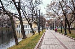 俄国 公园在干净的池塘的莫斯科 2017年11月18日 库存照片